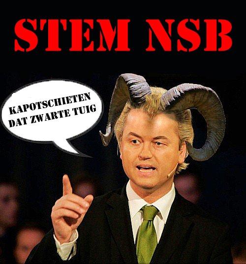 stem-nsb